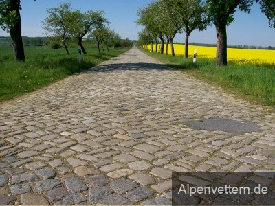 Pflasterstraßen wie diese sind eine höllische Herausforderung für Rennradfahrer und ihr Material.