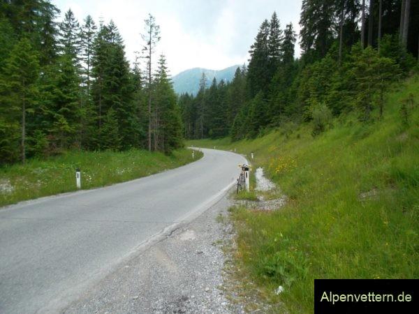 Der höchste Punkt des Ammersattel liegt mitten im Wald, leider ohne Schild