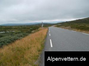 Bizarr: Oben am Venabygdfjell erwartet uns im Nebel eine sumpfige Mooslandschaft